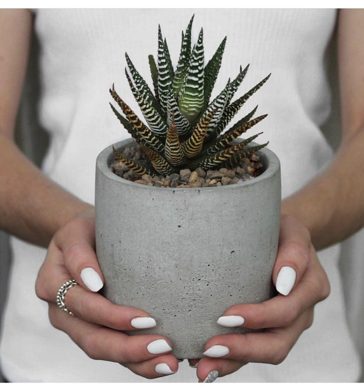 Делаем горшок для цветов своими руками