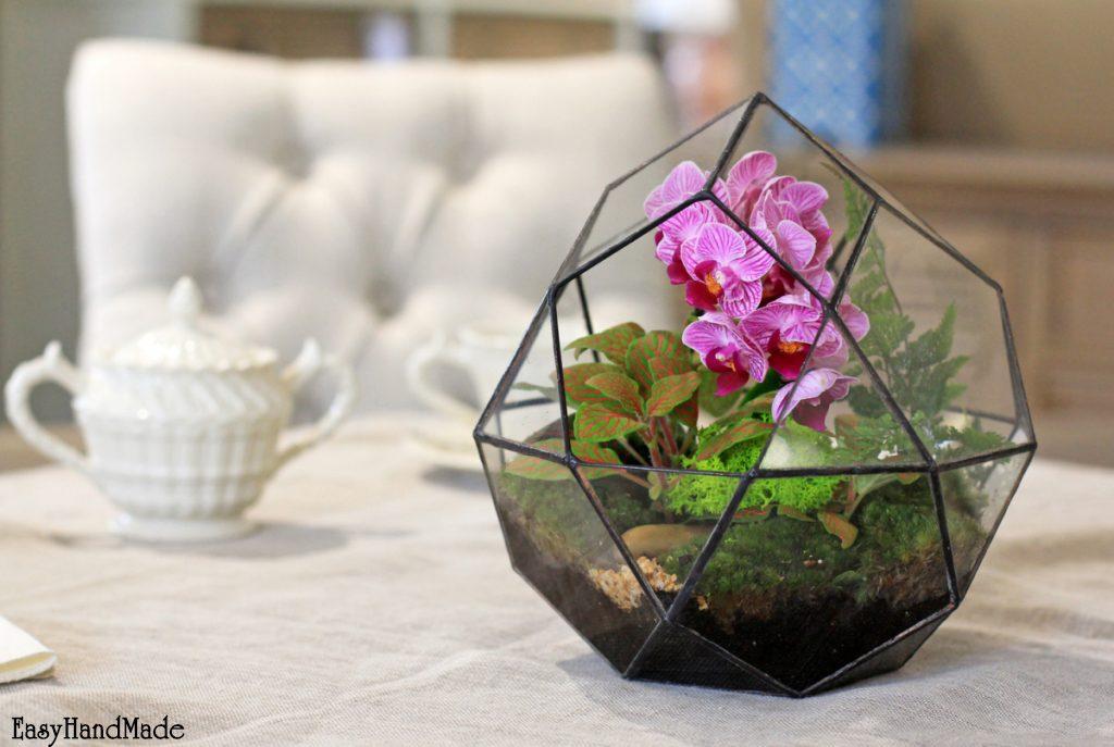 Флорариум из орхидеи