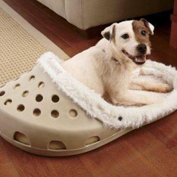 Как сделать домик для собаки: мастер-классы