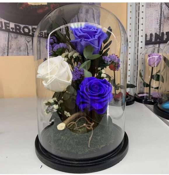 Цветы за стеклом