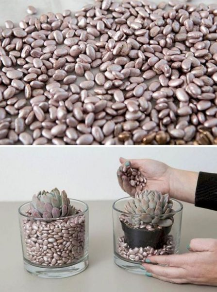 Как украсить землю в цветочном горшке