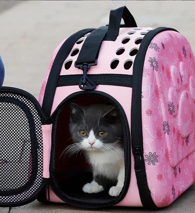 Переноска для кошки своими руками: 2 идеи